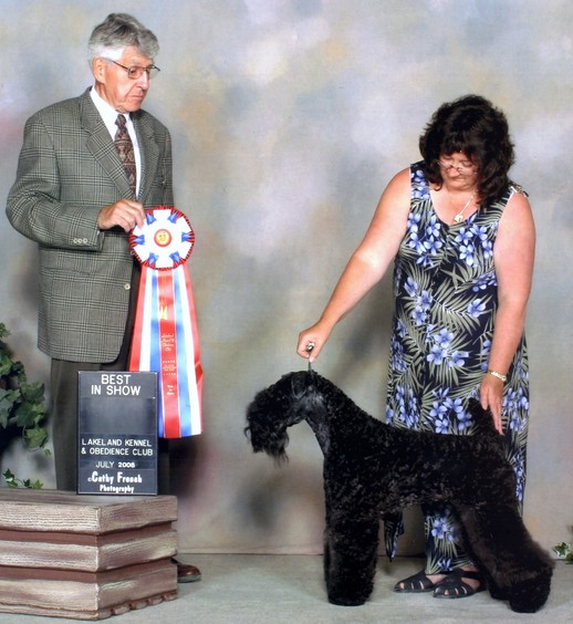 Diana's Kerries, Kerry Blue Terrier, AM and CAN CH DIANA'S GLORY OF DEAGLAN
